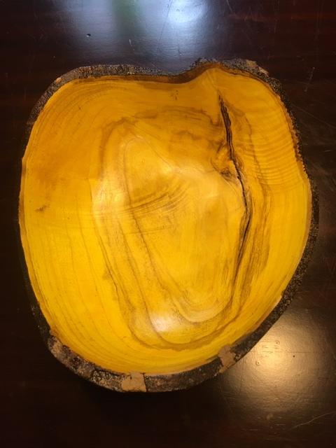 Kevin-Mulligan-1-Yellow-wood-IMG_1511